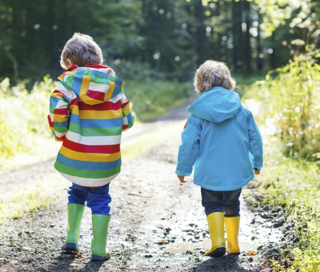 Children Sibling Adoption